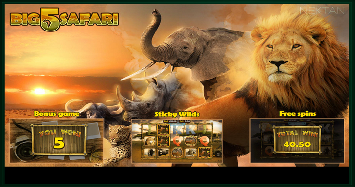 Big 5 Safari Slot Review