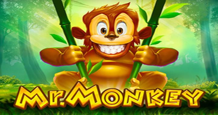 Mr Monkey Slot Review