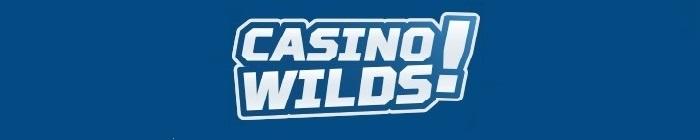 CasinoWilds Casino Review